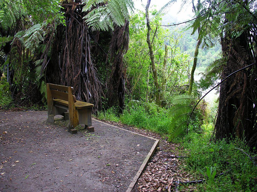 3 Ein Platz, um den Regenwald zu genießen