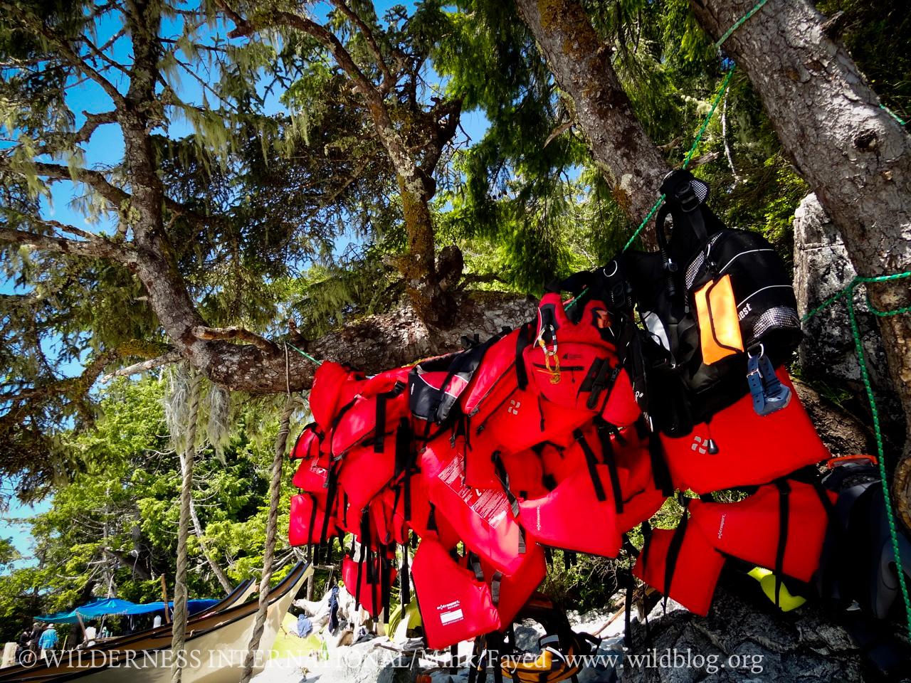 http://wi.wildblog.org/wp-content/uploads/2012/07/lr-08868.jpg
