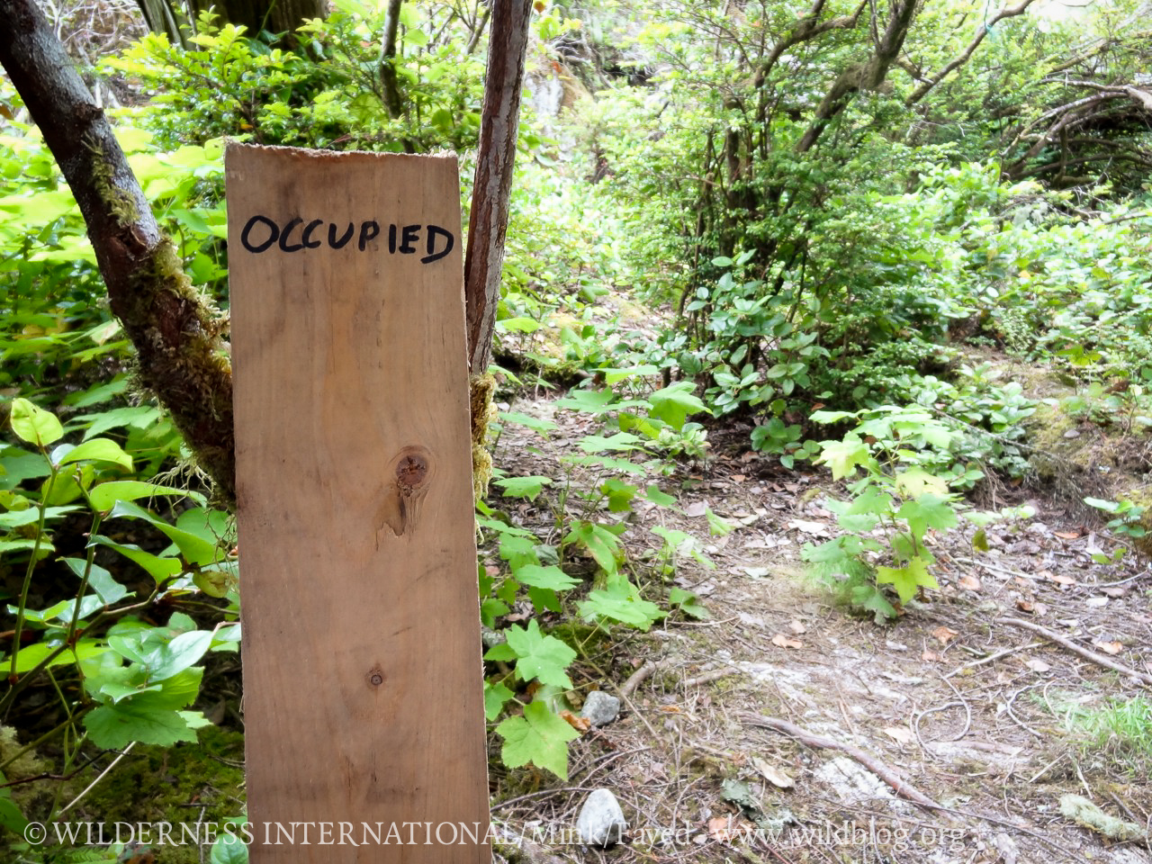 http://wi.wildblog.org/wp-content/uploads/2012/07/lr-09127.jpg