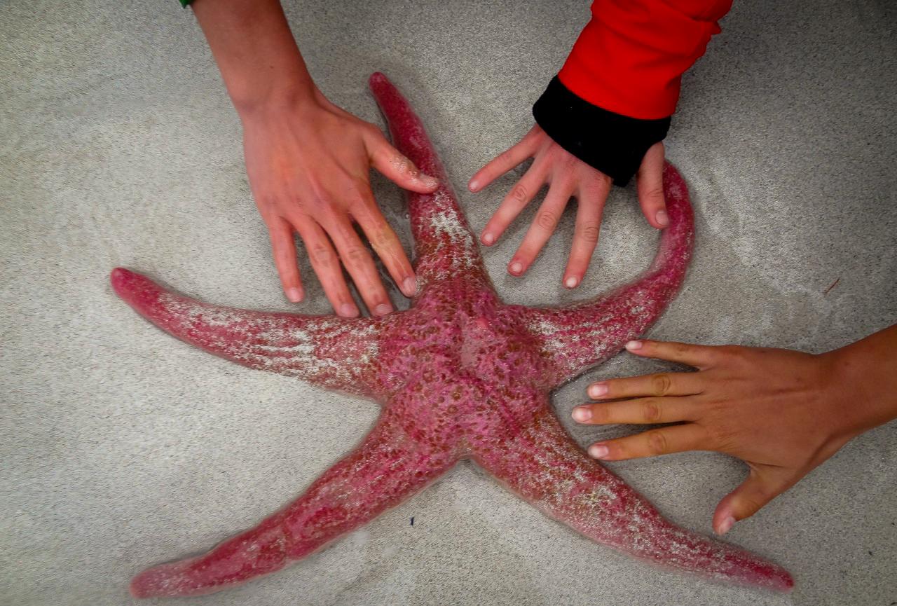http://wi.wildblog.org/wp-content/uploads/2012/07/lr-09198.jpg