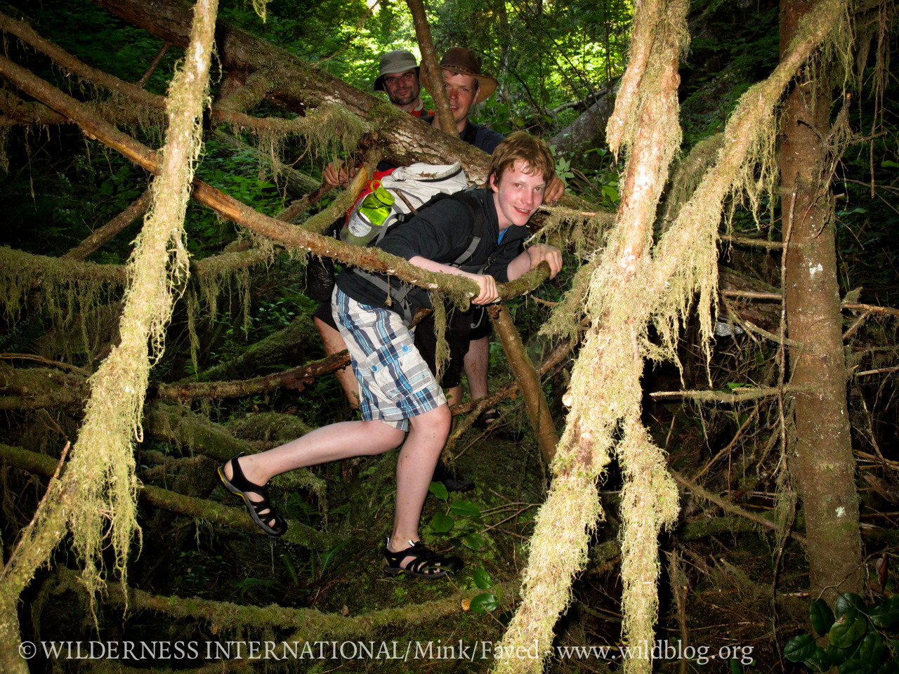 http://wi.wildblog.org/wp-content/uploads/2012/07/lr-1134.jpg
