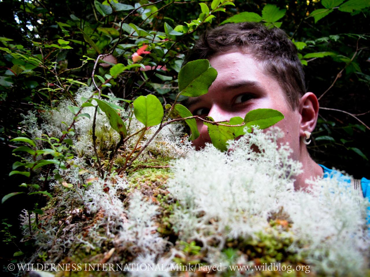http://wi.wildblog.org/wp-content/uploads/2012/07/lr-1148.jpg